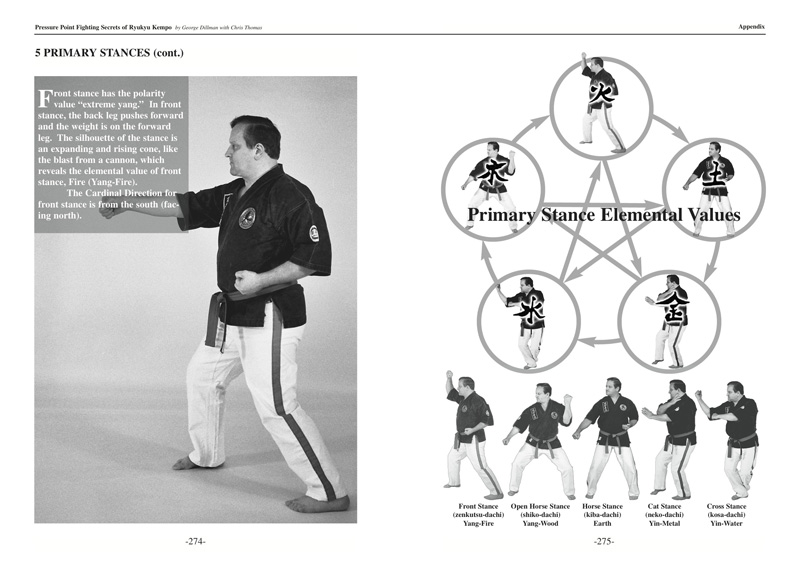 Pressure point fighting secrets of ryukyu kempo pdf